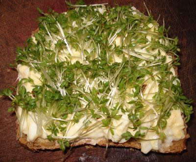 egg-cress-sandwich-2.jpg